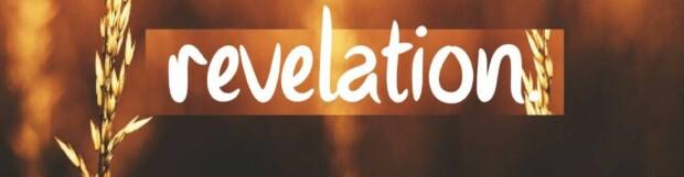 The Giving Principle: Revelation